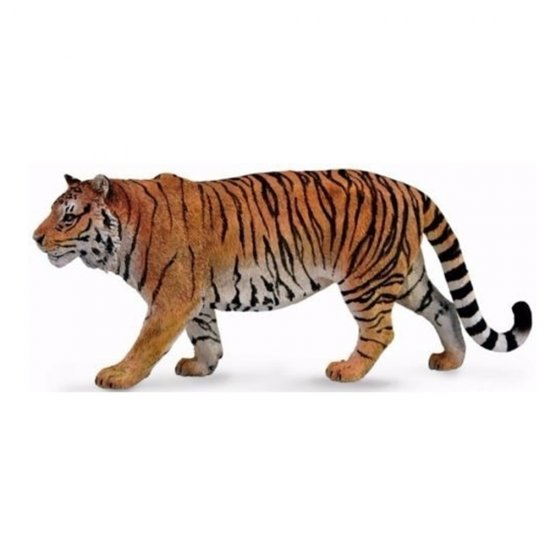 Tigre Siberiano - Collecta