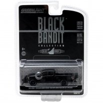 Miniatura Carro Ford F-150 Black Bandit Rescue Team (2015) - Série 16 - 1:64 - Greenlight
