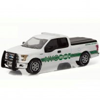 Imagem - Ford: F-150 Lariat (2015) - Dot New York City - 1:64 - Greenlight